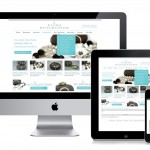 Responsive Design ou site mobile